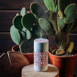 Humidifier (Lucky Cup, Pink)